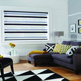 Vision Roller Blinds Gallery